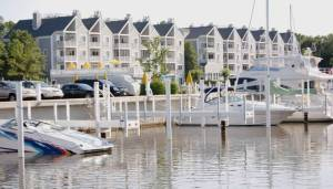 Harbor Shores and New Buffalo Community