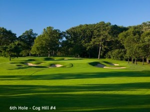 6th Hole Cog Hill