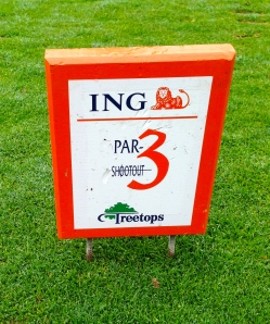 You must play from these tee markers in the National Par 3 Team Championship and that makes the challenge more difficult.