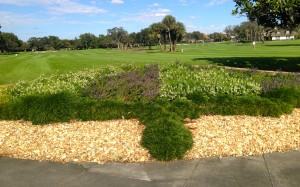 Bay Hill floral displays