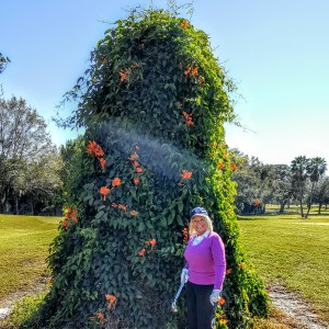 Colorful floral offerings spice up a round at Lake Wales.