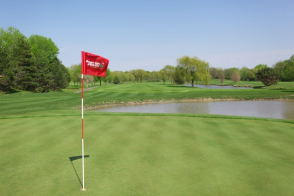 Arlington Lakes Golf Club flag